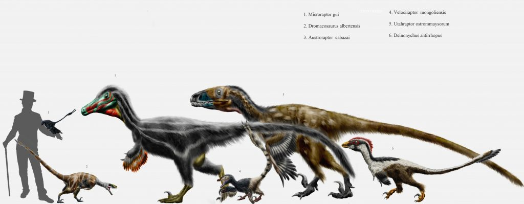 Dromaeosaurid_parade_by_durbed